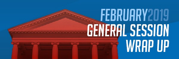 Big Wins from the 2019 Virginia General Assembly Session Post Thumbnail