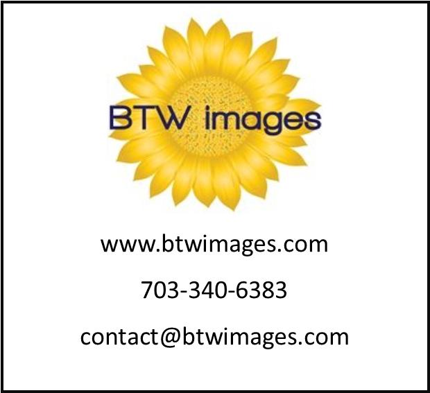 BTW Images Site